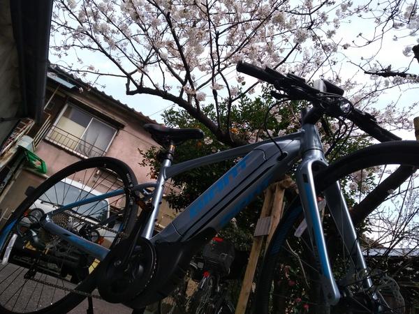 【e-バイク】ジャイアント エスケープRX-E+(イープラス)【メーカー欠品解消】